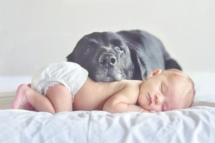 bebes e crianças