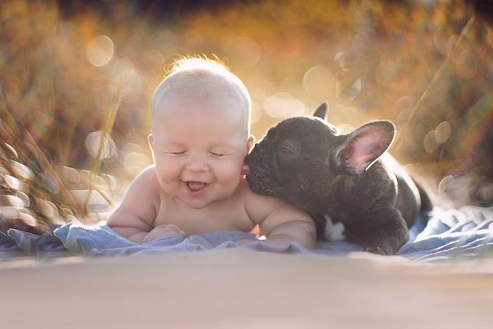 Recém nascidos que convivem com cachorros adoecem muito menos