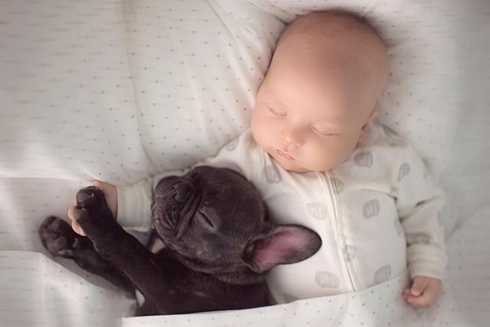 cachorro-e-bebe-juntos-3