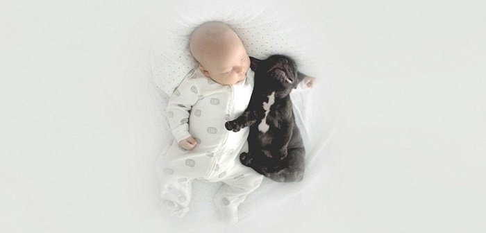 cachorro-e-bebe-juntos-7