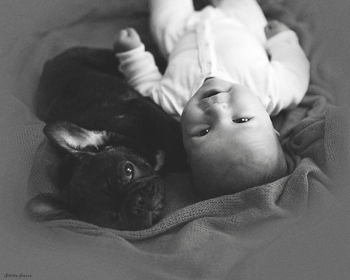 cachorro-e-bebe-juntos-8