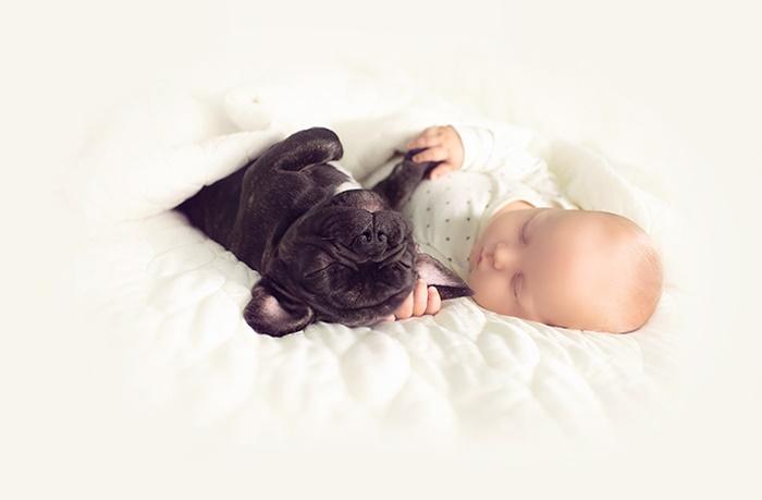 cachorro-e-bebe-juntos-9